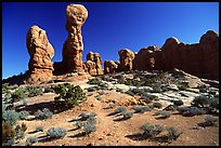 Garden of  Eden, a cluster of pinnacles and monoliths. Arches National Park, Utah, USA.