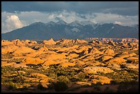 Petrified dunes and cloudy La Sal mountains. Arches National Park, Utah, USA. (color)