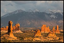 Fins and La Sal mountains. Arches National Park ( color)
