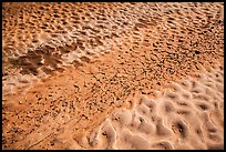 Sand and mud patterns, Courthouse Wash. Arches National Park ( color)