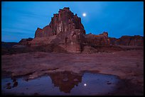 Courthouse tower and moon reflected in pothole. Arches National Park, Utah, USA. (color)