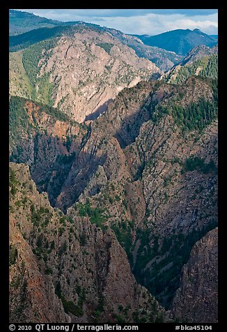 Tomichi Point view, late afternoon. Black Canyon of the Gunnison National Park (color)