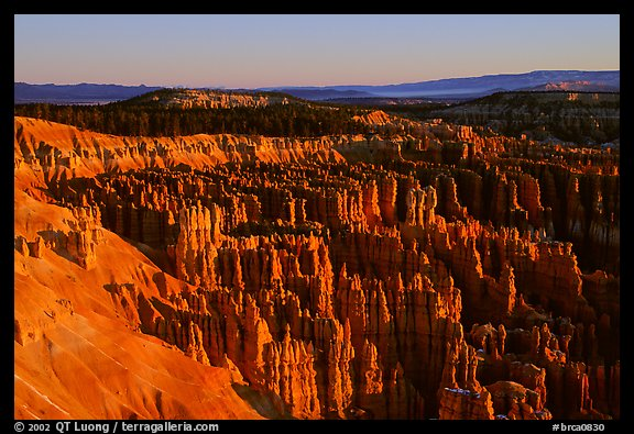 Silent City in Bryce Amphitheater from Bryce Point, sunrise. Bryce Canyon National Park (color)