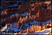 Shadows and lights, Bryce Amphitheater from Sunrise Point, morning. Bryce Canyon National Park, Utah, USA.