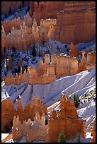 Snowy ridges and hoodoos, Bryce Amphitheater, early morning. Bryce Canyon National Park ( color)
