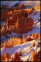 Bryce Amphitheater from Sunrise Point, winter sunrise. Bryce Canyon National Park ( color)