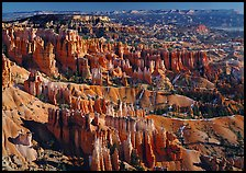 View of Queens Garden spires from Sunset Point, morning. Bryce Canyon National Park, Utah, USA.