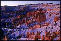 Bryce amphitheater from Sunrise Point, dawn. Bryce Canyon National Park, Utah, USA.