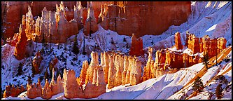 Hoodoos and snowy slopes, early morning. Bryce Canyon National Park (Panoramic color)