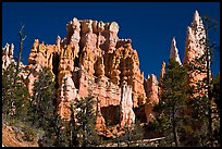 Hoodoos capped with magnesium-rich limestone. Bryce Canyon National Park ( color)