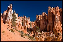 Hoodoos seen from below. Bryce Canyon National Park ( color)