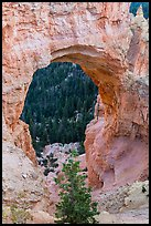 Natural Bridge. Bryce Canyon National Park ( color)