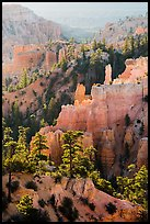 Trees, ridges, and hoodoos, Fairyland Point. Bryce Canyon National Park ( color)
