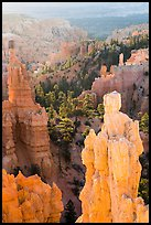Hoodoos of Claron Formation, Fairyland Point. Bryce Canyon National Park ( color)