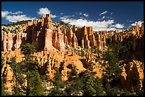 Hill with hoodoos along Fairyland Loop. Bryce Canyon National Park ( color)