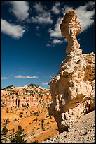Mushroom-shaped freestanding hoodoo. Bryce Canyon National Park ( color)