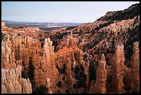 Hooodoos and canyon at dusk, Fairyland Point. Bryce Canyon National Park ( color)