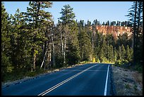 Park road. Bryce Canyon National Park ( color)