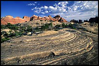 Circular sandstone striations near Elephant Hill, the Needles, late afternoon. Canyonlands National Park, Utah, USA.