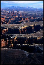 Monument basin from Grand View Point, Island in the Sky, late afternoon. Canyonlands National Park, Utah, USA.