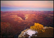 Gorge and plateau at sunset, Island in the Sky. Canyonlands National Park, Utah, USA.