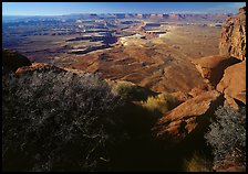 Green river overlook and Henry mountains, Island in the sky. Canyonlands National Park, Utah, USA.