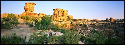 Rock spires, Needles District. Canyonlands National Park (Panoramic color)