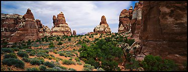 Rock towers, Chessler Park, Needles District. Canyonlands National Park (Panoramic color)