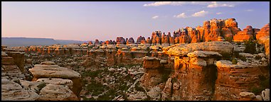 Colorful spires of Cedar Mesa Sandstone, sunset, Needles District. Canyonlands National Park (Panoramic color)