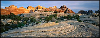 Sandstone Swirls and Rock needles at sunset, Needles District. Canyonlands National Park (Panoramic color)