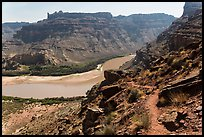 Trail overlooking Colorado River. Canyonlands National Park, Utah, USA.
