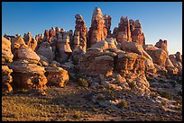 Dollhouse spires at sunrise, Maze District. Canyonlands National Park ( color)