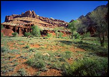 Castle Meadow and Castle, spring. Capitol Reef National Park, Utah, USA.