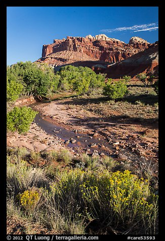 Stream and cliffs. Capitol Reef National Park (color)