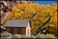 Fruita one-room schoolhouse in autumn. Capitol Reef National Park, Utah, USA. (color)