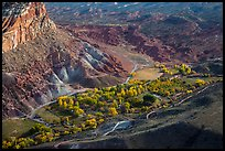 Fruita campground from above in autumn. Capitol Reef National Park ( color)