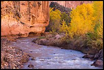 Fremont River, cottonwoods, and cliffs in autumn. Capitol Reef National Park ( color)