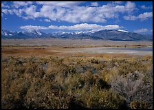 Snake Range raises above Sagebrush plain, seen from the East. Great Basin National Park, Nevada, USA.