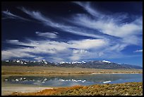 Snake Range seen from the East above a pond. Great Basin National Park, Nevada, USA. (color)