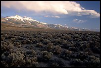 Snake Range and Wheeler Peak above sagebrush flats, from the West. Great Basin National Park ( color)