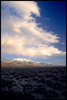 Snake Range and Wheeler Peak raising above Sagebrush, sunset. Great Basin National Park ( color)