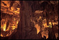Tall columns in Lehman Cave. Great Basin National Park, Nevada, USA. (color)