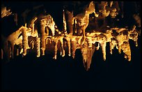 Water drops dripping of stalactites, Lehman Cave. Great Basin National Park ( color)