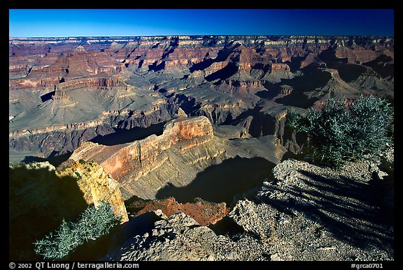 View from Hopi point, morning. Grand Canyon National Park (color)