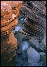 Red sandstone gorge carved by Deer Creek. Grand Canyon National Park, Arizona, USA.