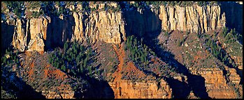 Canyon rim. Grand Canyon National Park (Panoramic color)