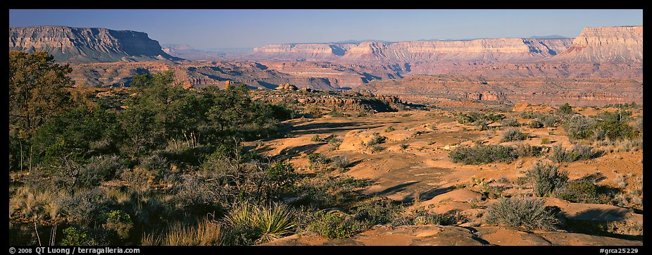 Esplanade Plateau scenery. Grand Canyon National Park (color)