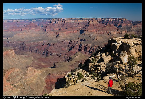Visitor looking, Moran Point. Grand Canyon National Park (color)