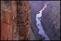 Colorado River and Cliffs at Toroweap, late afternoon. Grand Canyon National Park, Arizona, USA.