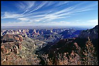 View from Vista Encantada, morning. Grand Canyon National Park, Arizona, USA.